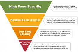A graph on food insecurity